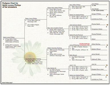 Nettie Phillips Family Tree 01