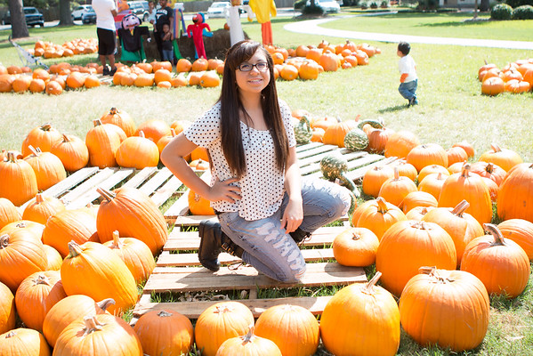 Pumkin patch 2014