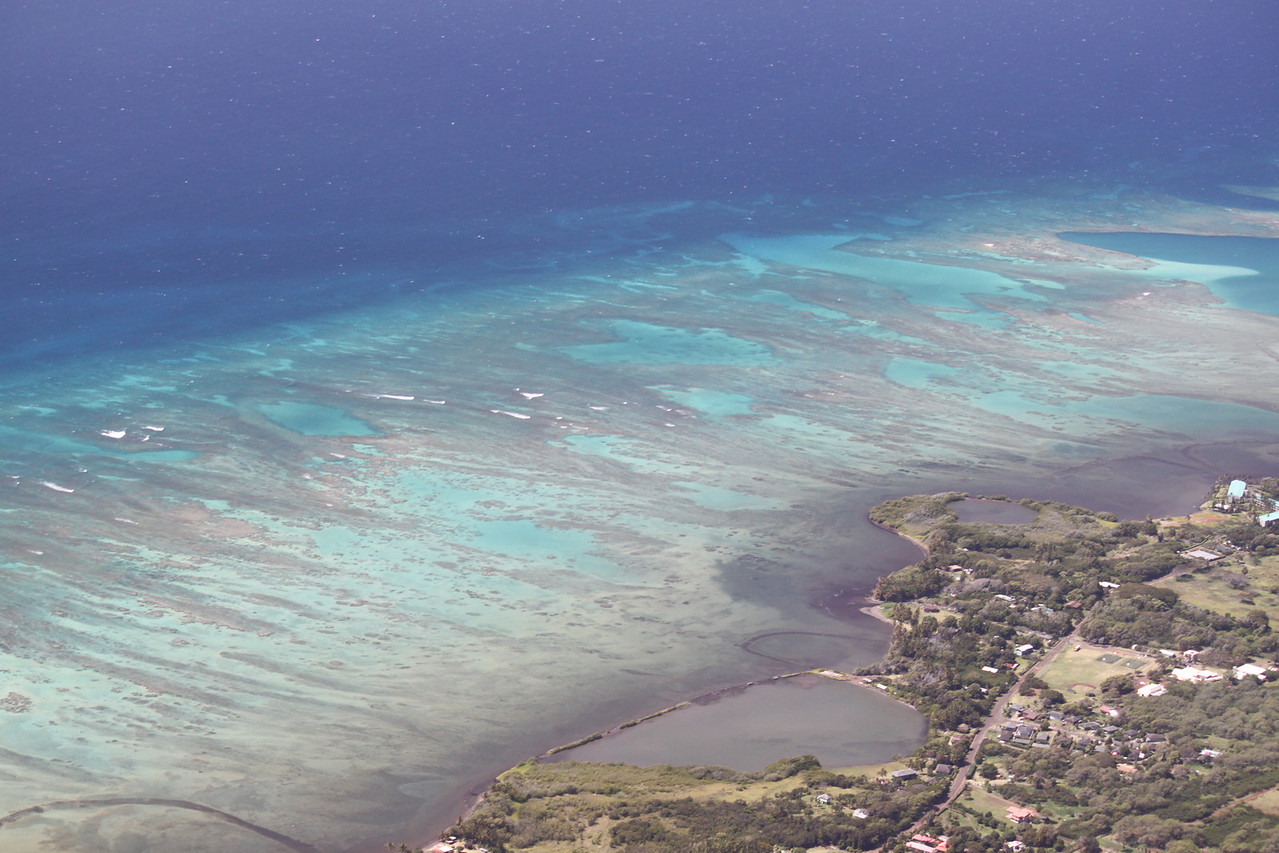 Coral reef on southern Molokai.