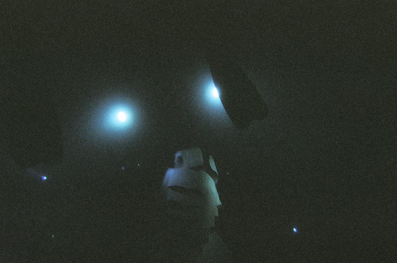 Manta ray coming toward the camera.