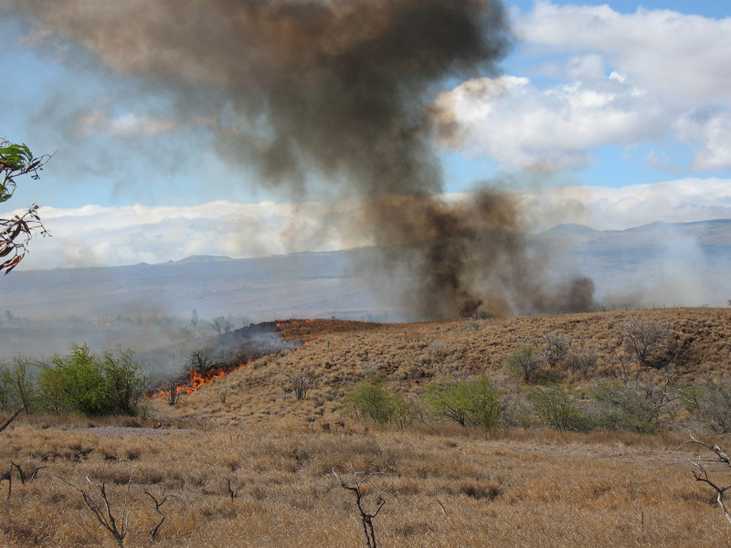 Fire breaks out on the dry fields next to the golf course on August 10th.