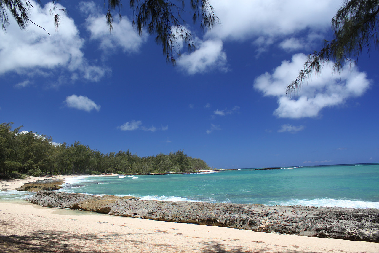 Turtle Bay, North Shore, Oahu