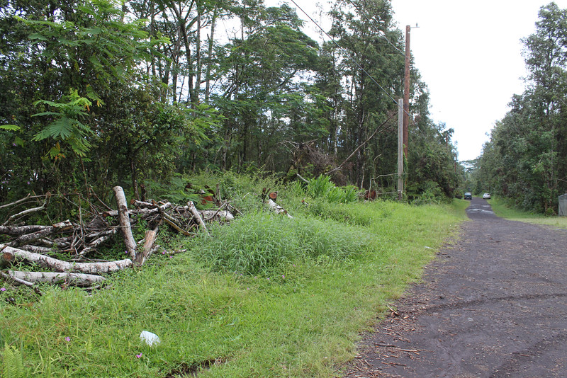 Further south view on Maui Rd.