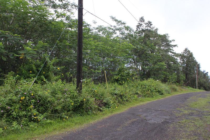 Further down Maui Rd.