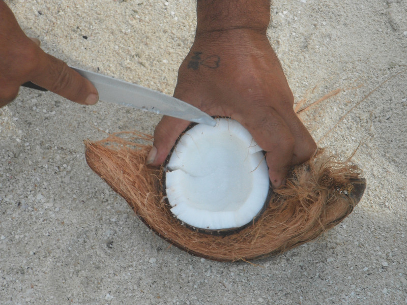 Fresh coconut meat and water.