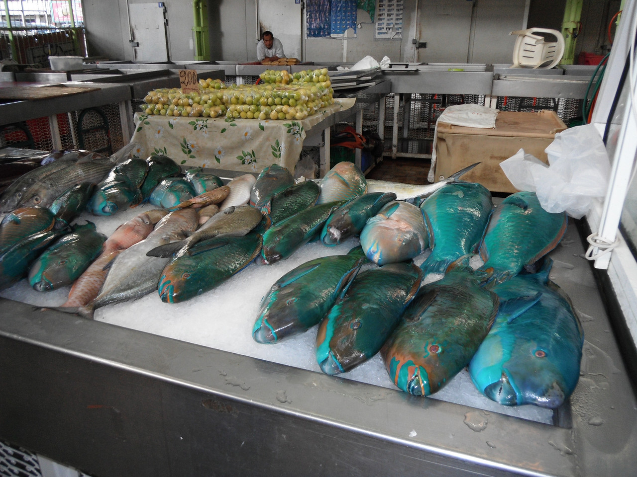 Parrotfish at the Papeete open-air market. They are delicious and super mild filets!