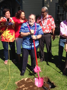 Governor Abercrombie at the Waimea Cherry Blossom Festival on February 1.