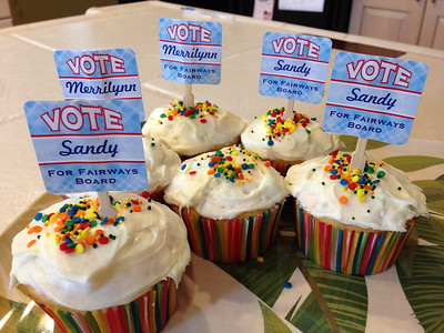Vote Sandy for Fairways Board of Directors!