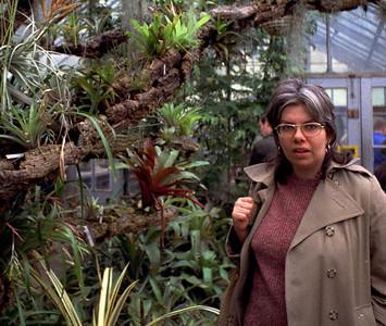 Brooklyn Botanic Garden, April, 1973.