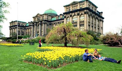 New York Botanical Garden, May 7, 1972