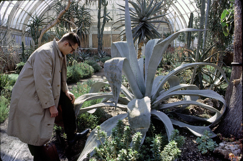 Walt Blum taking in an agave in a conservatory of the New York Botanical Gardens, adjacent to the Fordham campus.