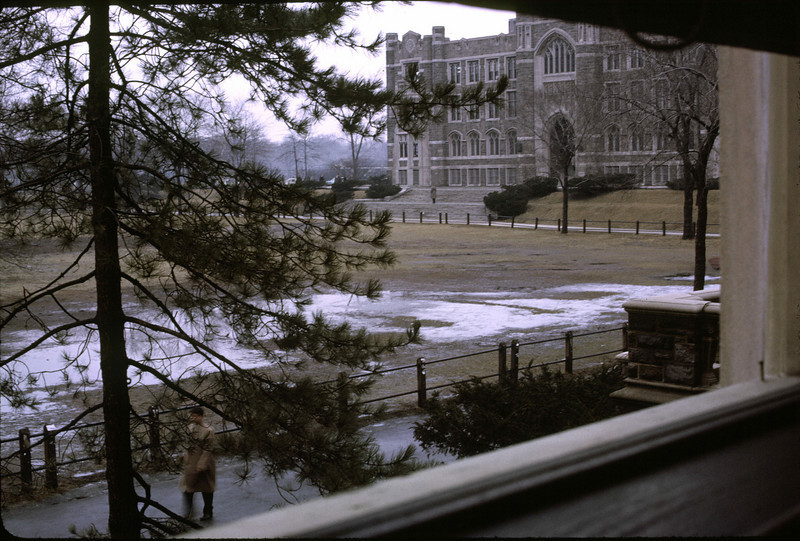 View from Freeman Hall.
