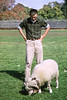 Walt Blum accompanies Rameses, the Fordham ram, shortly before the latter was painted green by the Manhattan College Jaspers.