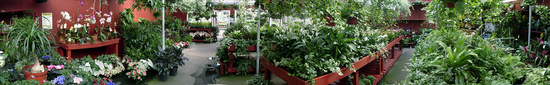 "A sweeping panoramic view of the greenhouse.  I hate to use so trite a word as ""breathtaking,"" but that's what it is."