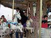 At an amusement park in Chiba
