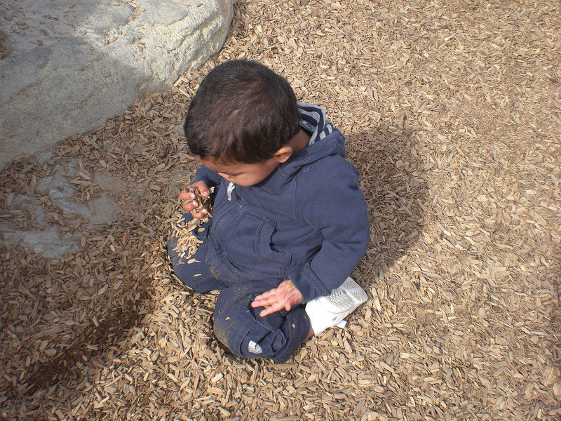 Devin at the playground