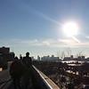 High-Line park