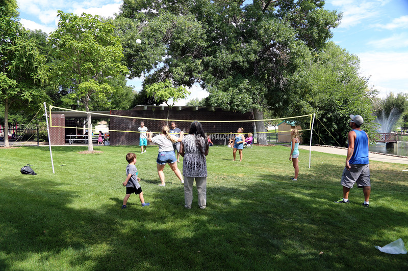 2016 Boone Family Reunion at Dartmouth Park  in Englewood, Colorado - 7 Aug 2016