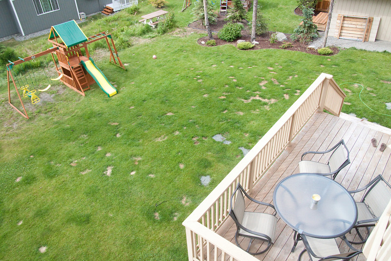 the backyard and lower deck.