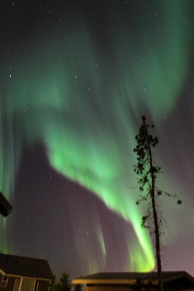 AK-Northern-Lights-ibjc-8835
