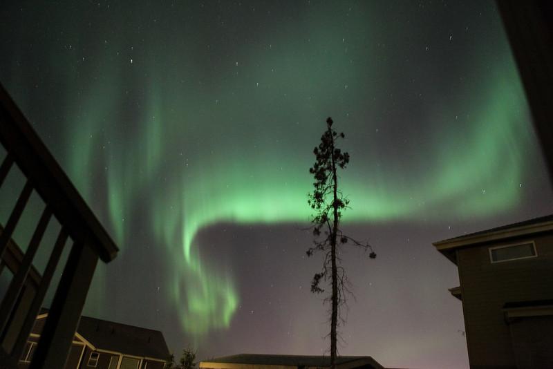 AK-Northern-Lights-ibjc-8878