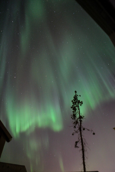 AK-Northern-Lights-ibjc-8874