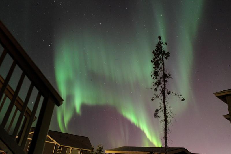 AK-Northern-Lights-ibjc-8838