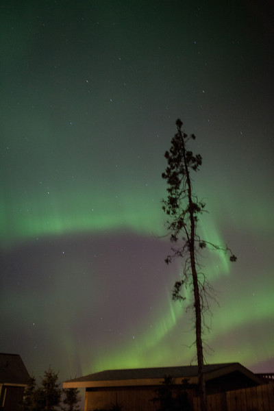 AK-Northern-Lights-ibjc-8913