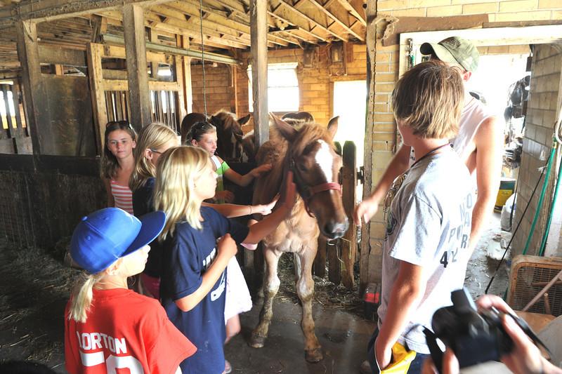 Visit to McGrew's Greentop Farms 07-16-11 007