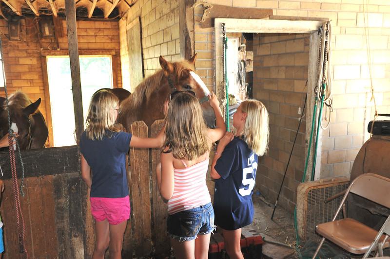 Visit to McGrew's Greentop Farms 07-16-11 020