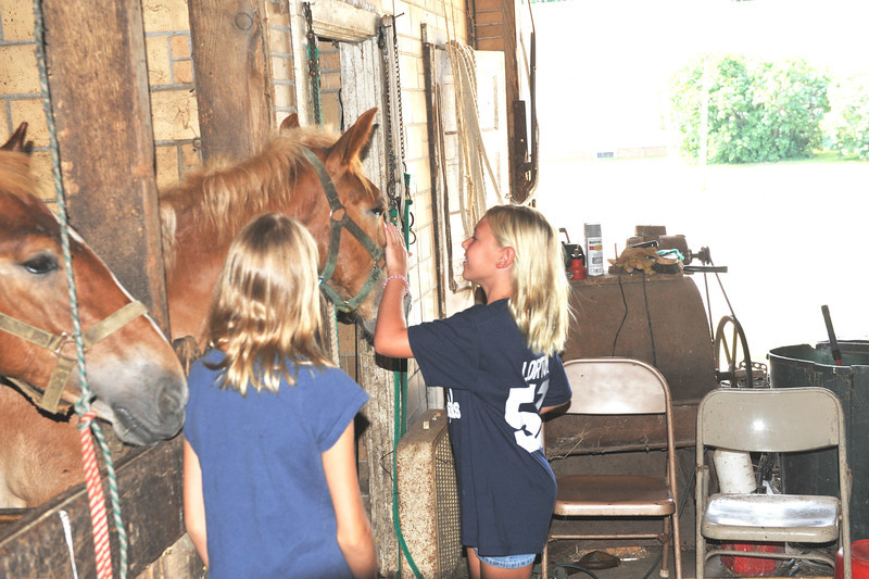 Visit to McGrew's Greentop Farms 07-16-11 019