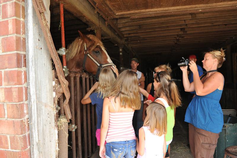 Visit to McGrew's Greentop Farms 07-16-11 024