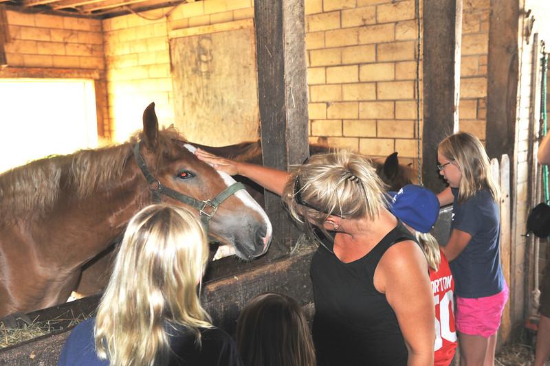Visit to McGrew's Greentop Farms 07-16-11 003