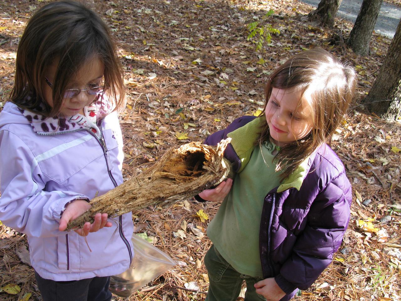 Kindergarten trip to Jordan Lake