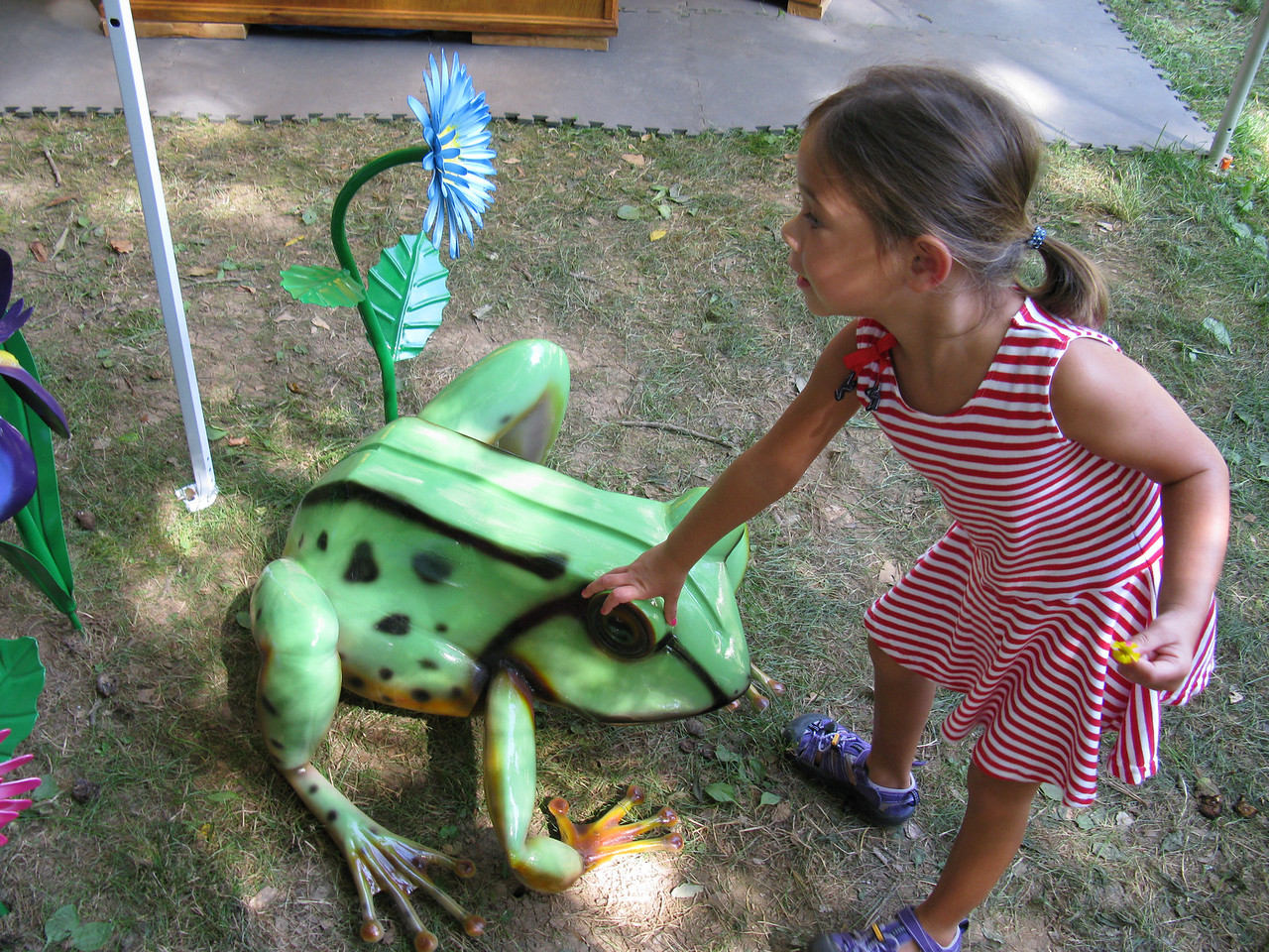 Nice froggy<br /> July 4, 2009