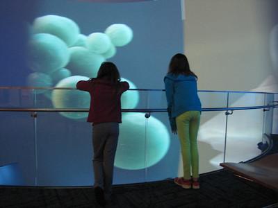 North Carolina Museum of Natural Sciences 12/2014