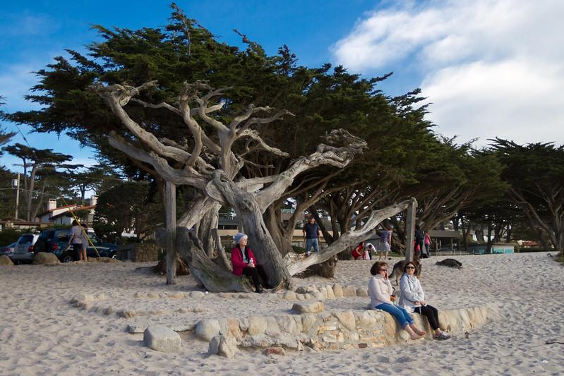 020511e-Monterey-Carmel-ibjc-3678
