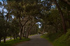 020511e-Monterey-Carmel-ibjc-3673