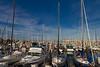 020511e-Monterey-Carmel-ibjc-3749