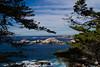 020511e-Monterey-Carmel-ibjc-3650