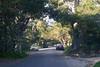 020511e-Monterey-Carmel-ibjc-3748