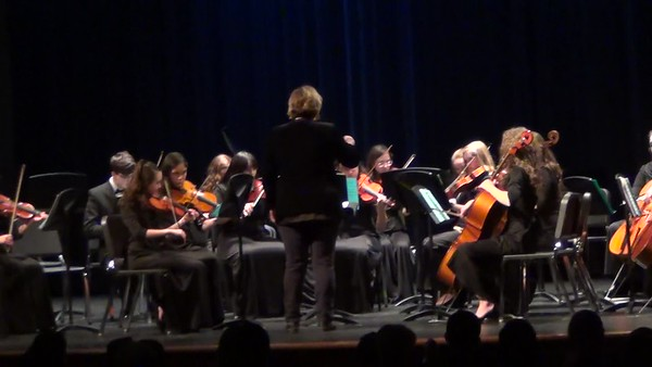 Cat Orchestra Chamber and Sinfonetta - Video