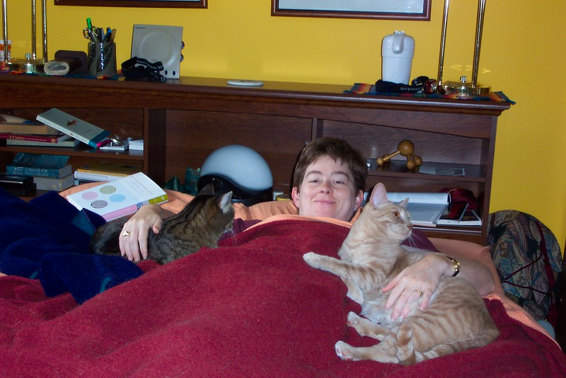 Since Patti has only two hands, it's good that only two cats are asking for attention.