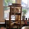 Oscar, October 29, 2004