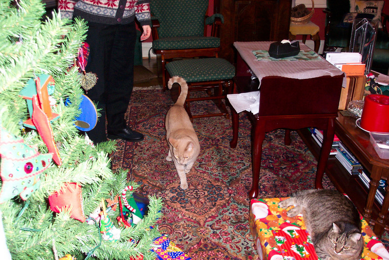 Oscar and Gertie are helping Patti gather up the presents.