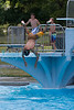 Springbrook_Pool-3972