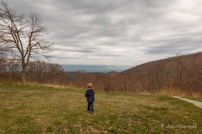 Henry - Sunset Field Overlook, BRP (April '12)