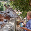 Henry - Feeding Giraffes at Zoo