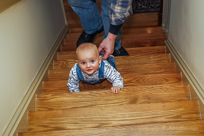 David's family hauled away our tree & a bunch of leaves & yard debris early in the new year; Henry at 9 months, here climbing our stairs with David right behind him