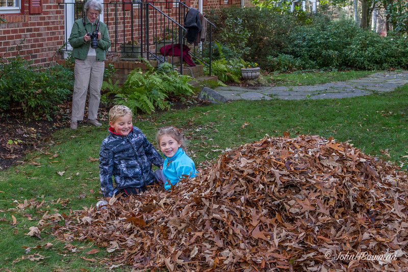 David, Becca, Conner, Mac, Henry, Carol, and Isabella came to clean up leaves & visit; in about 5 hours, 53 bags (39-gallon) were filled, and David took down 2 large dead limbs hanging in willow oak; last leaf pile to be bagged provided some fun, too